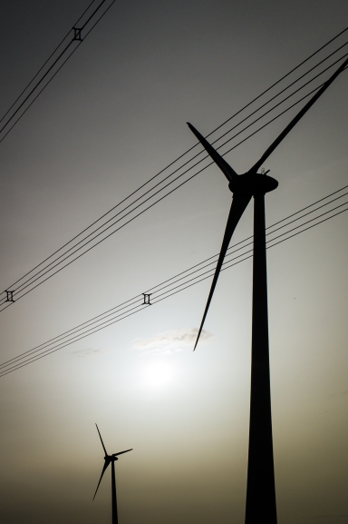 Week Eight - Renewable20160403-L1096662